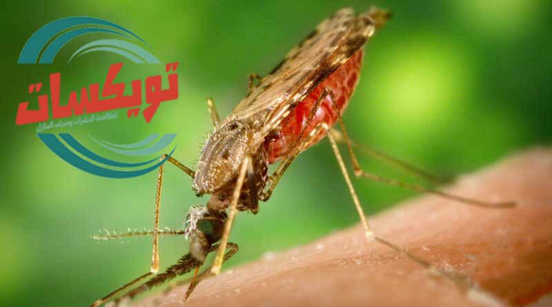 نبذه عن المبيدات واضرارها
