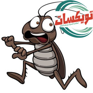 نصائح للتخلص من الحشرات المنزلية