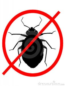 no-bed-bugs-17934517
