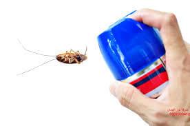 ارقام شركات مكافحة حشرات بالرياض