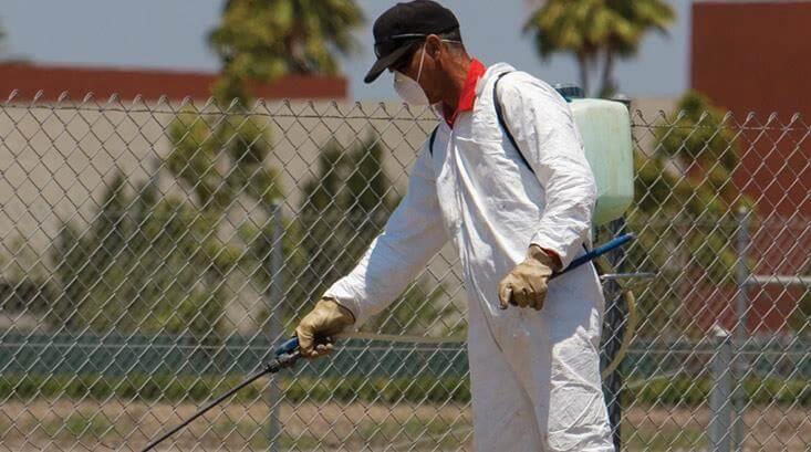 شركة مكافحة حشرات رخيصه بالدمام