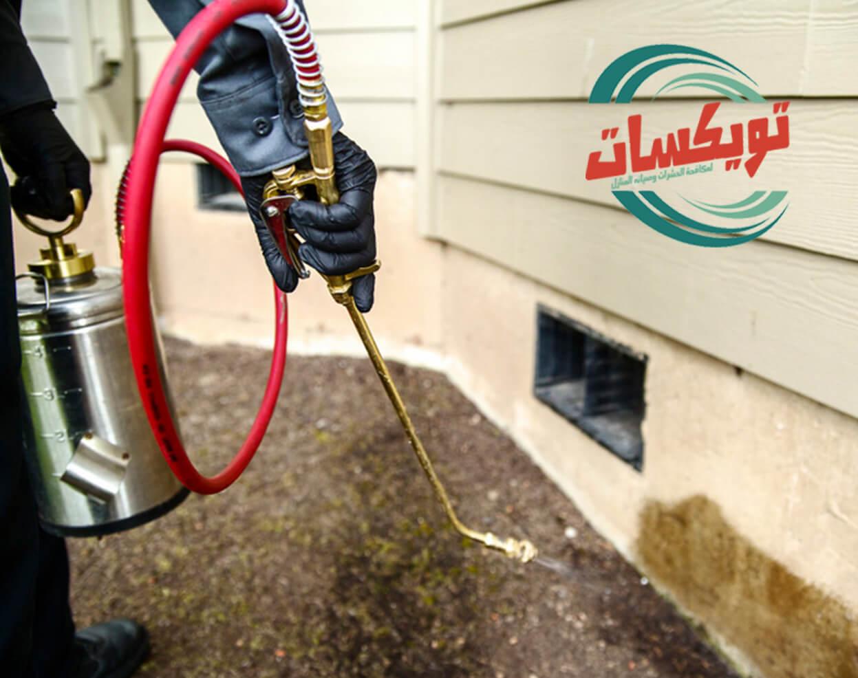 Photo of شركة رش مبيدات بجازان