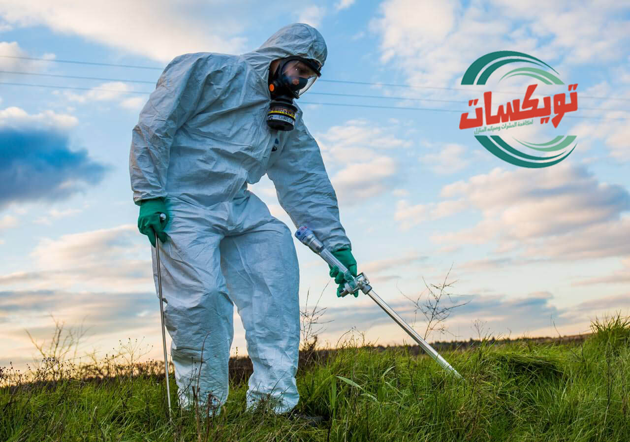 Photo of شركة رش مبيدات بابها