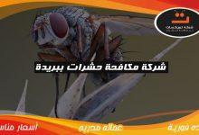 Photo of شركة مكافحة حشرات ببريدة