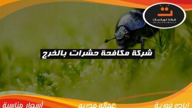 Photo of شركة مكافحة حشرات بالخرج