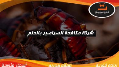 Photo of شركة مكافحة الصراصير بالدلم