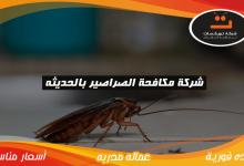 Photo of شركة مكافحة الصراصير بالحديثه