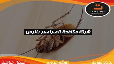 Photo of شركة مكافحة الصراصير بالرس