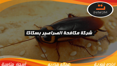 Photo of شركة مكافحة الصراصير بسكاكا