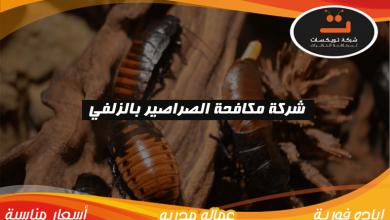 Photo of شركة مكافحة الصراصير بالزلفي