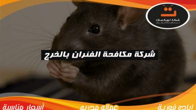 Photo of شركة مكافحة الفئران بالخرج