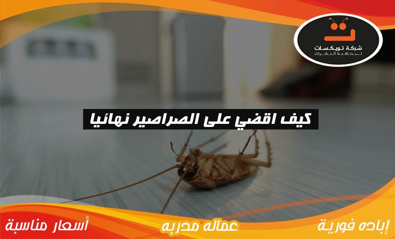 كيف اقضي على الصراصير نهائيا
