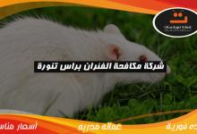 Photo of شركة مكافحة الفئران براس تنوره