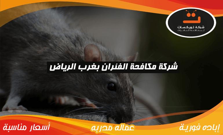 شركة مكافحة الفئران بغرب الرياض