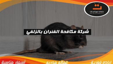 Photo of شركة مكافحة الفئران بالزلفي