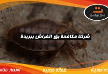 Photo of شركة مكافحة بق الفراش ببريدة