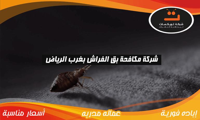 شركة مكافحة بق الفراش بغرب الرياض