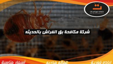 Photo of شركة مكافحة بق الفراش بالحديثه