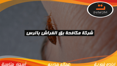 Photo of شركة مكافحة بق الفراش بالرس