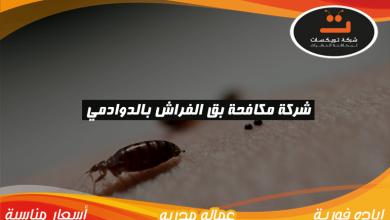 Photo of شركة مكافحه بق الفراش بالدوادمي