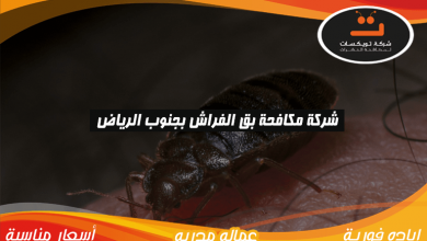 Photo of شركة مكافحه بق الفراش بجنوب الرياض