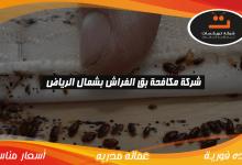 Photo of شركة مكافحه بق الفراش بشمال الرياض