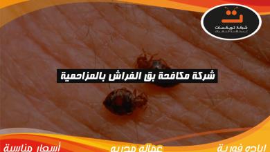 Photo of شركة مكافحه بق الفراش بالمزاحمية