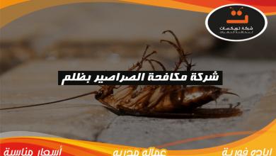 Photo of شركة مكافحه الصراصير بظلم