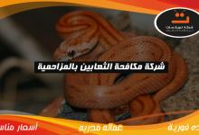 Photo of شركة مكافحه الثعابين بالمزاحمية