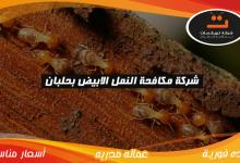 Photo of شركة مكافحه النمل الابيض بحلبان