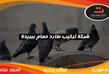 Photo of شركة تركيب طارد حمام ببريدة