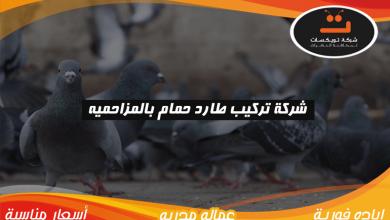 Photo of شركة تركيب طارد حمام بالمزاحميه