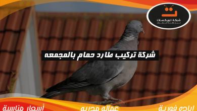 Photo of شركة تركيب طارد حمام بالمجمعه