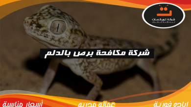Photo of شركة مكافحه برص بالدلم