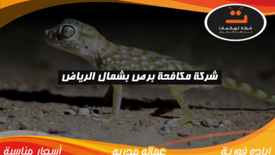 Photo of شركة مكافحه برص بشمال الرياض