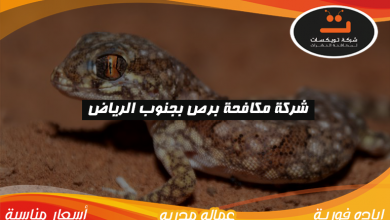 Photo of شركة مكافحه برص بجنوب الرياض