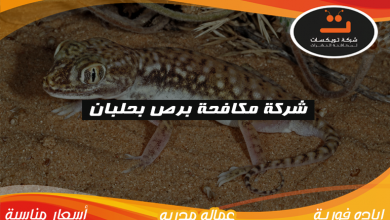 Photo of شركة مكافحه برص بحلبان