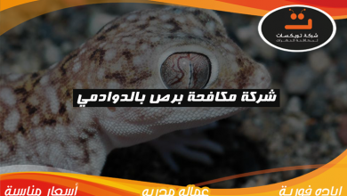 Photo of شركة مكافحه برص بالدوادمي