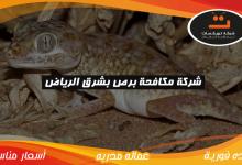 Photo of شركة مكافحة برص بشرق الرياض