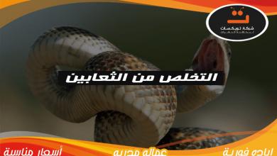Photo of التخلص من الثعابين