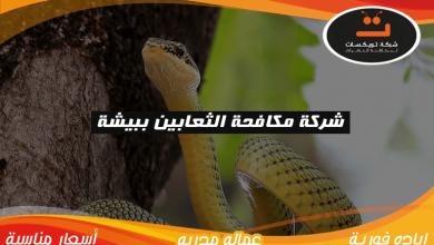 Photo of شركة مكافحه الثعابين ببيشة