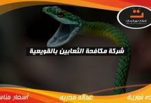 Photo of شركة مكافحه الثعابين بالقويعية