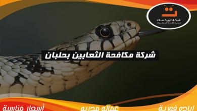 Photo of شركة مكافحه الثعابين بحلبان