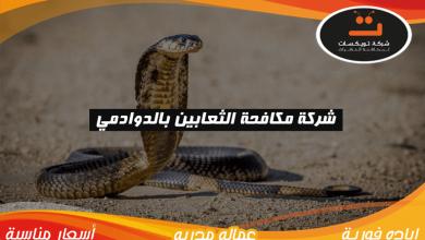Photo of شركة مكافحه الثعابين بالدوادمي