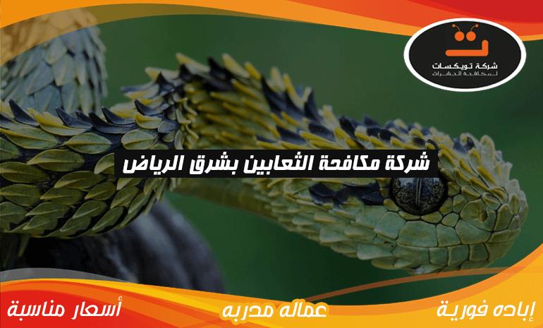 شركة مكافحة الثعابين بشرق الرياض
