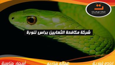 Photo of شركة مكافحة الثعابين براس تنوره