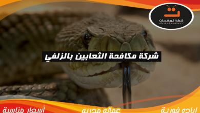 Photo of شركة مكافحة الثعابين بالزلفي