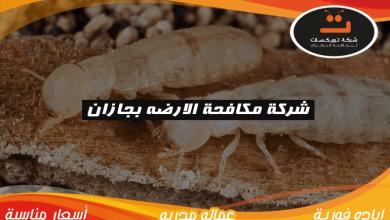 Photo of شركة مكافحة الارضه بجازان
