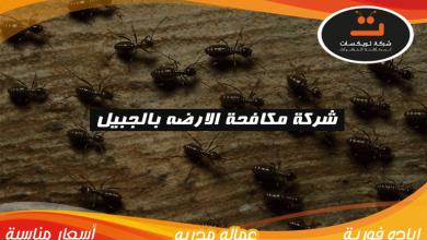 Photo of شركة مكافحة الارضه بالجبيل