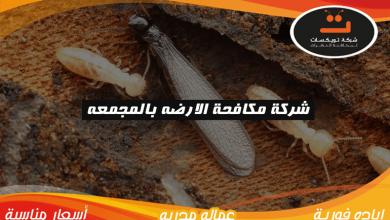 Photo of شركة مكافحة الارضه بالمجمعه